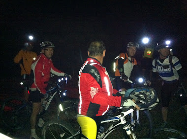 Paseo nocturno, 2011