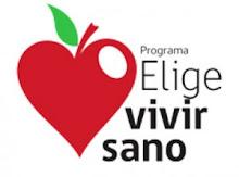 Programa del Gobierno de Chile