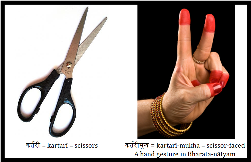 Practical Sanskrit Scissor Faced कर तर म ख Kartari Mukha
