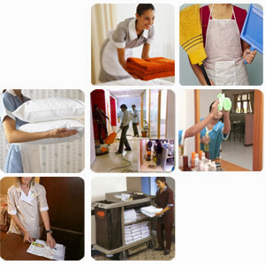 cleanliness and orderliness of the house maintenance ...