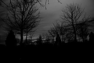 bosque celta