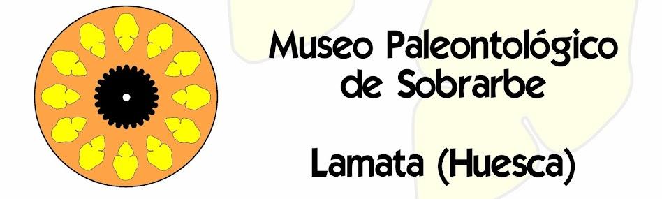 MUSEO FÓSILES DE SOBRARBE