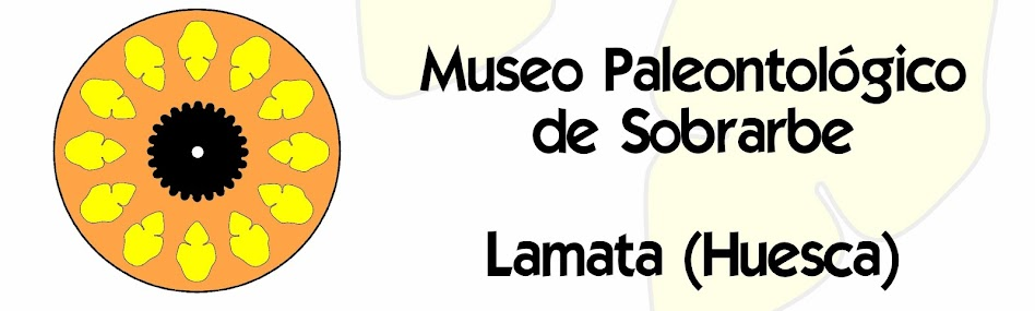 MUSEO PALEONTOLÓGICO DE SOBRARBE