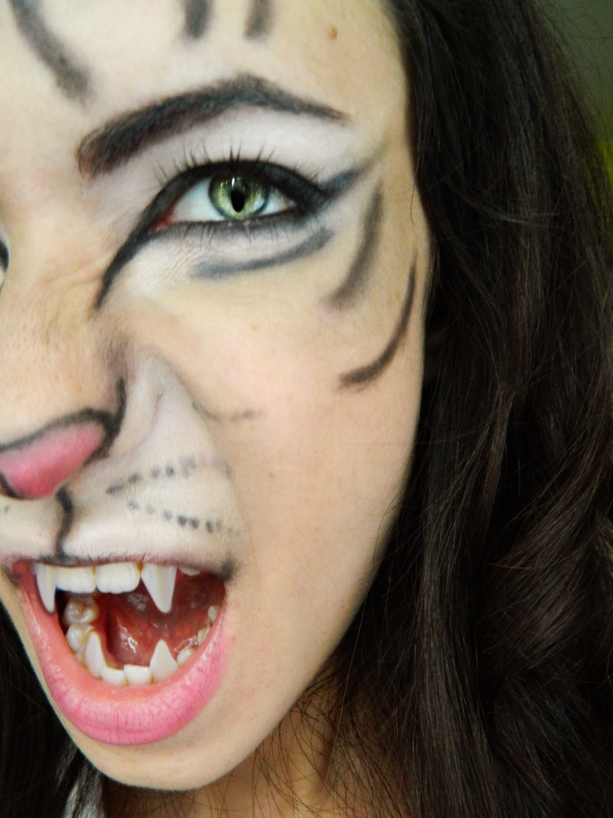 makeup and art freak tiger makeup tutorial for halloween