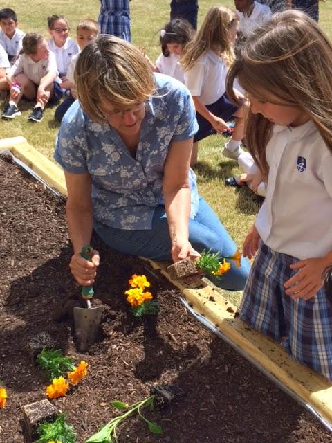 Montgomery Catholic First Grade Students Build Campus Garden 1