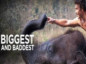 Biggest And Baddest – Volume 1 – Tamil Discovery Channel