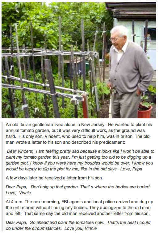An Old Italian Gentleman Lived Alone In New Jersey. His Son Helps Him planting tomato From Prison Like A Boss