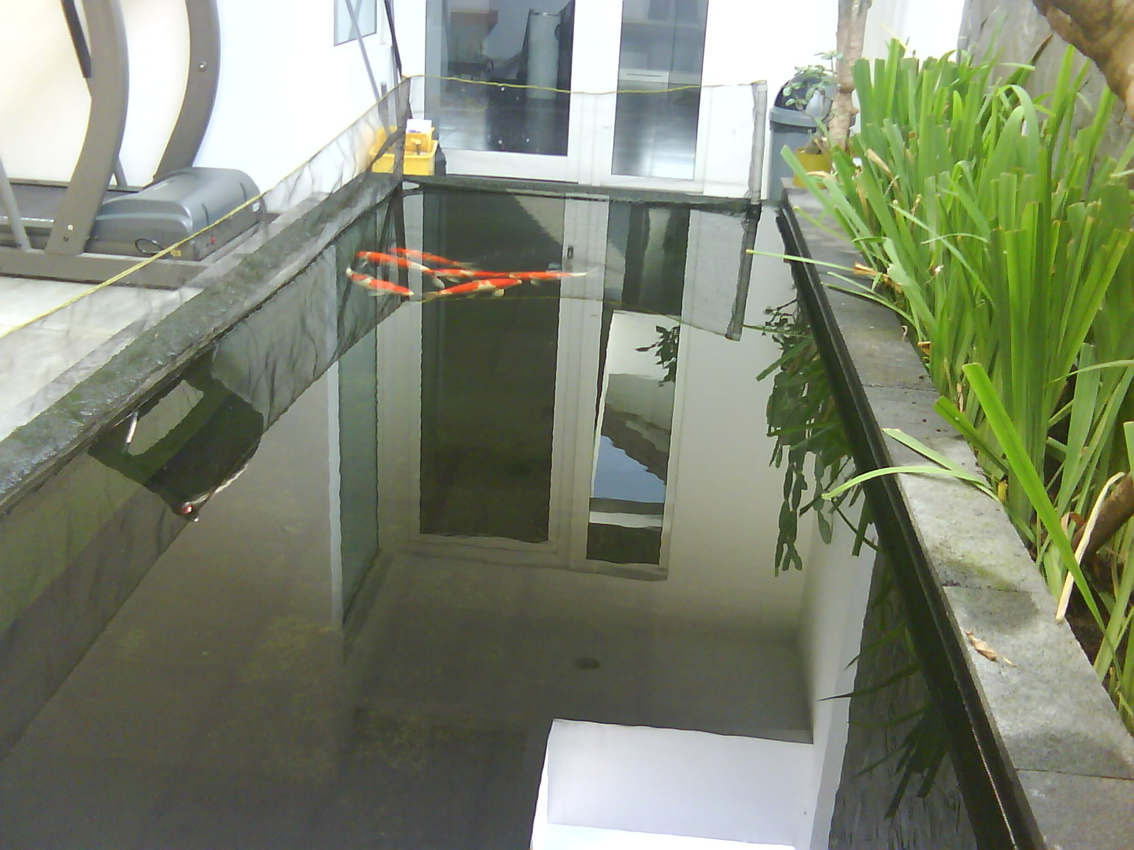 ahli buat kolam koi dan sistem filternya april 2012