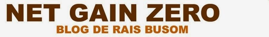 NET GAIN ZERO - Blog de Rais Busom