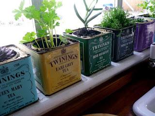 Reciclatex Un pequeño jardín enlatado