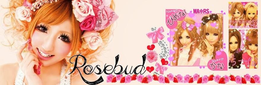 ✧ Rosebud ✧