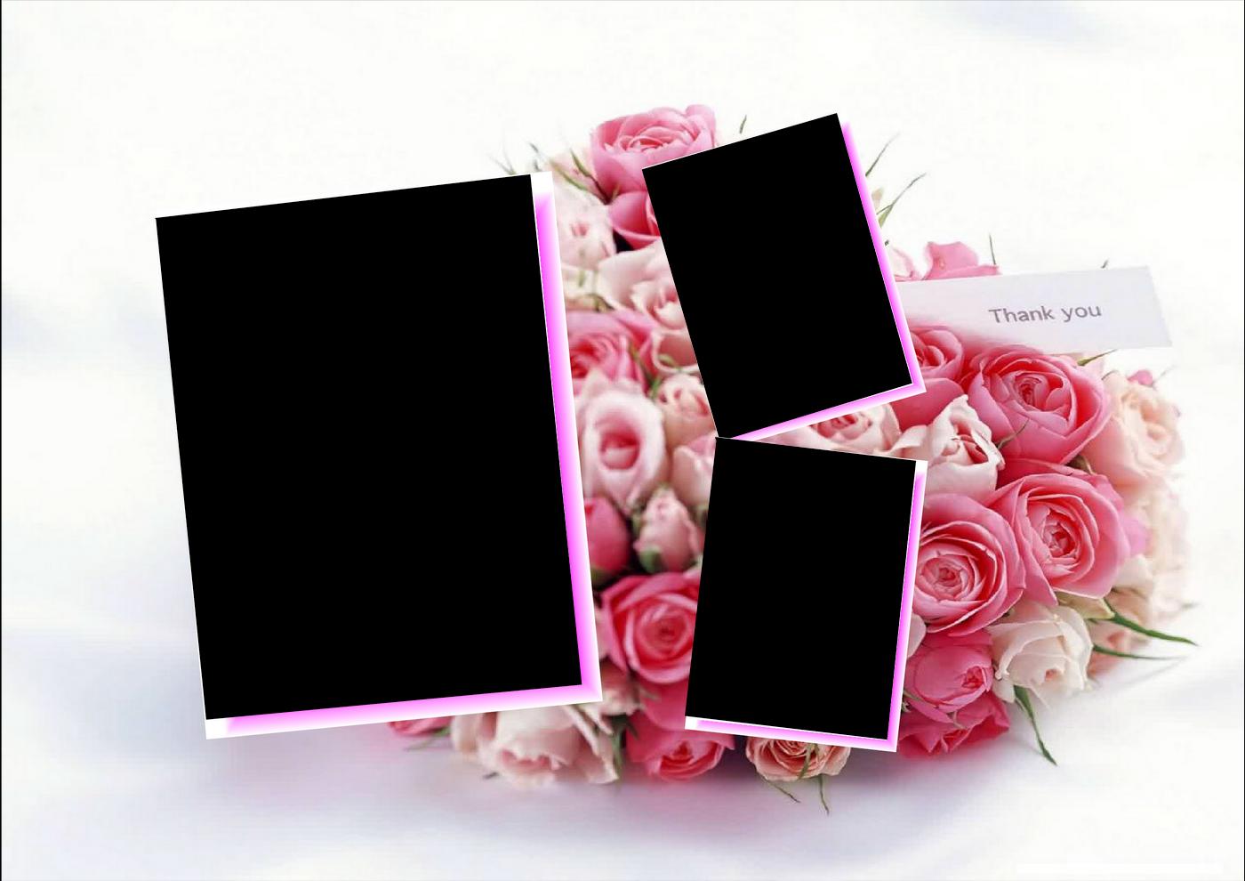 rosas con marco