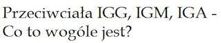 Chlamydia IGG logo