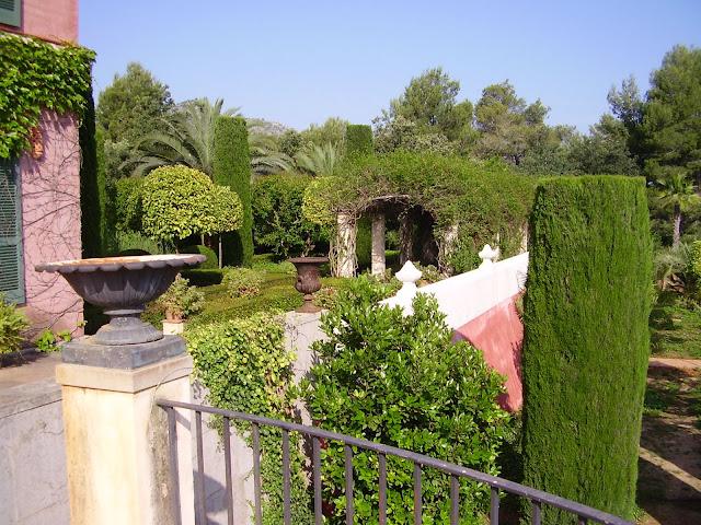 El jard n de l 39 albarda flora mediterr nea - El jardin mediterraneo ...