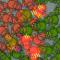 Microbe Madness!