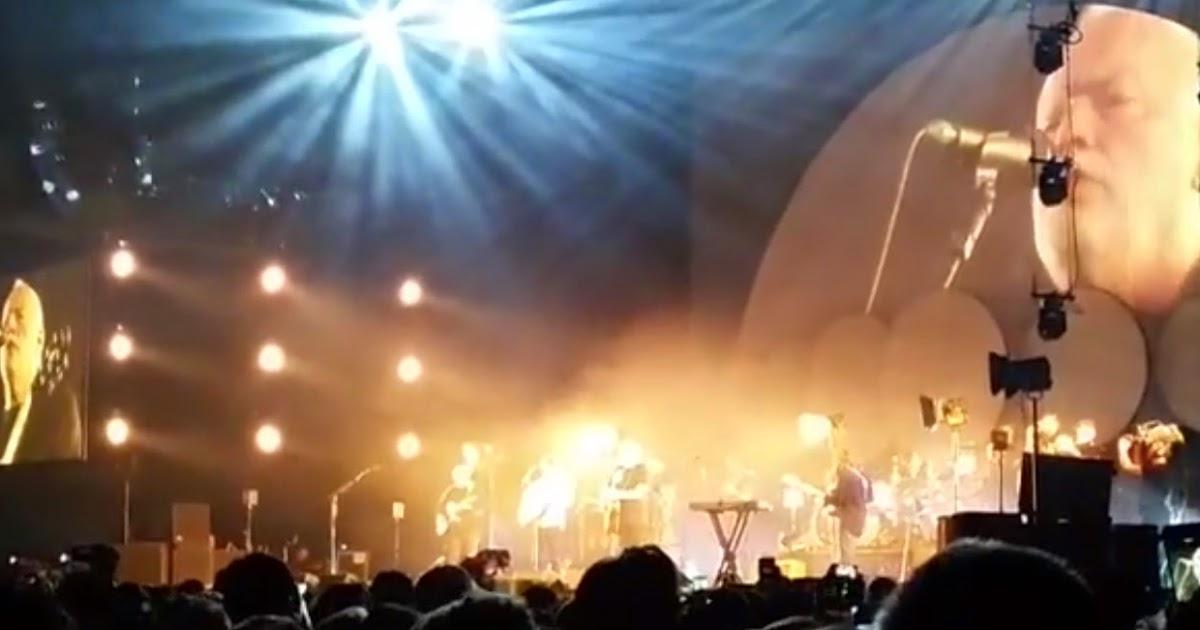 David Gilmour interpreta 'Wish you were here' con Bombay Bicycle Club