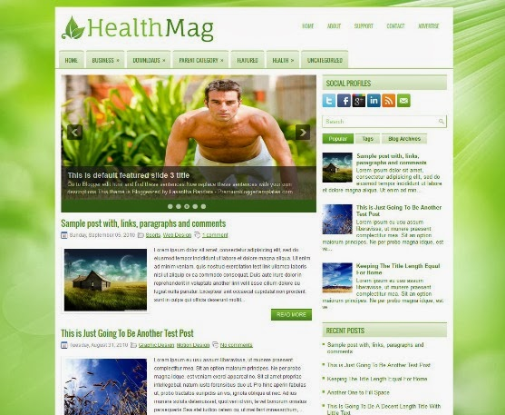 HealthMag Blogger Template