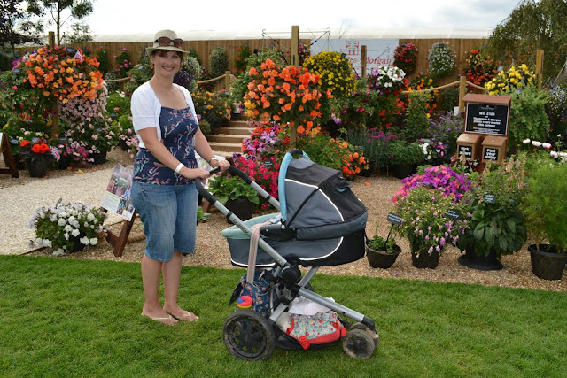 Tin Box Traveller and pram inferno to landscaped gardens