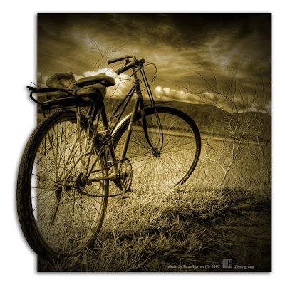 Xe đạp - Ảnh minh họa