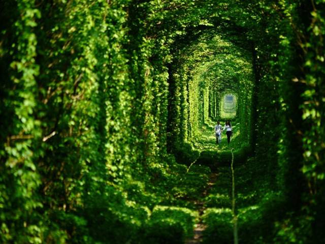 14. The Tunnel of Love in Ukraine