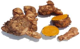 Temulawak Obat herbal sakit maag kronis