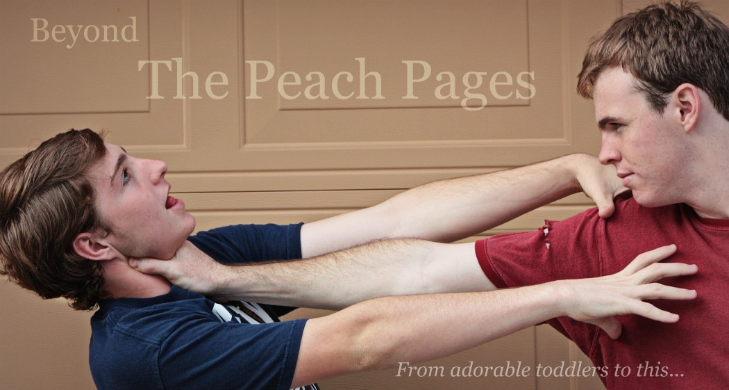 Beyond The Peach Pages