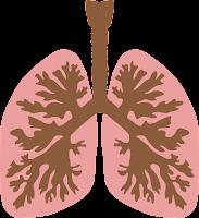 Qu'est-ce que le cancer du poumon