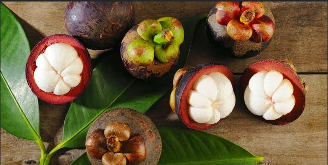 Research on Mangosteen Peel extremely Efficacious