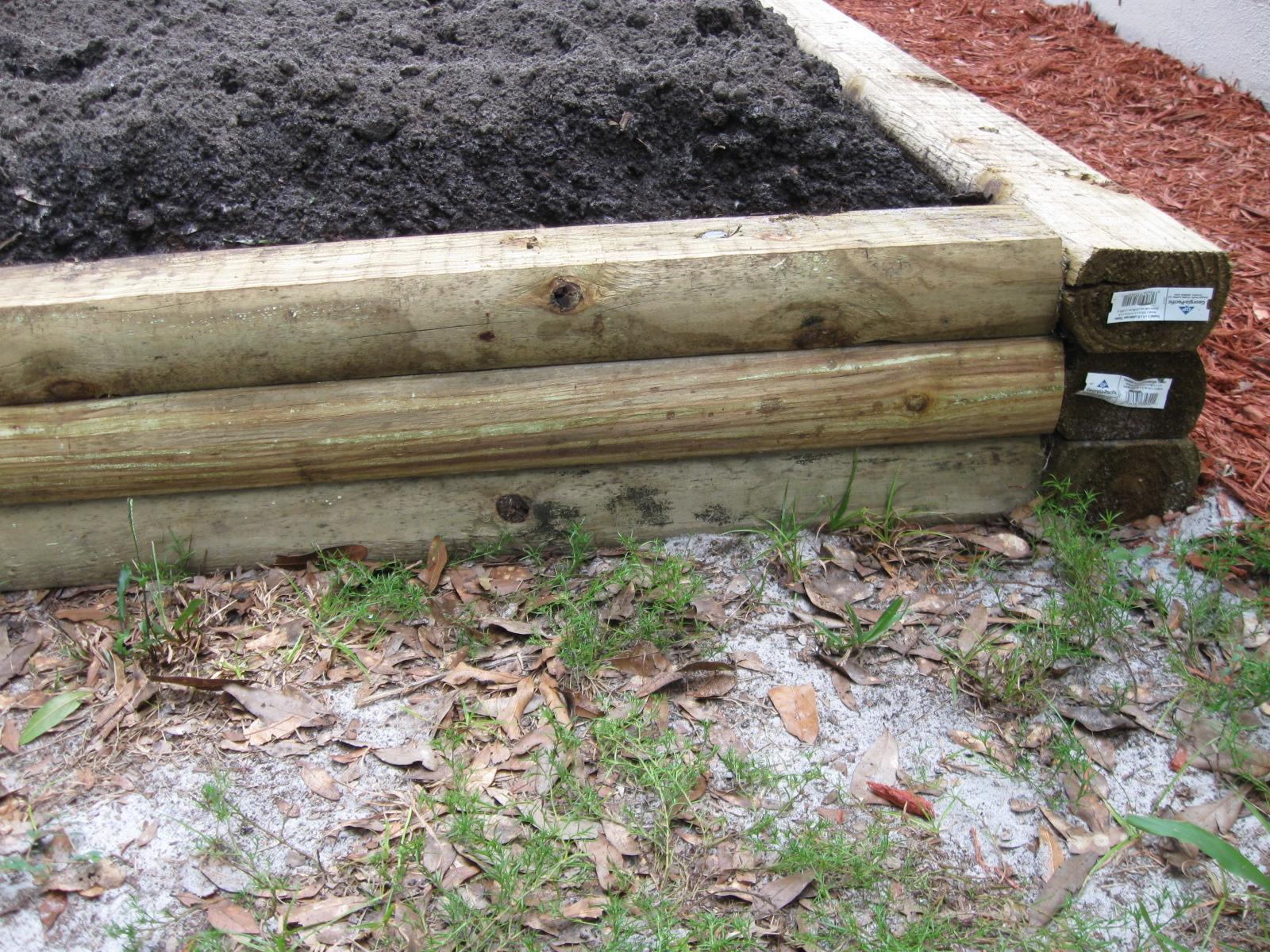 Growing Food In Florida Raised Garden Beds