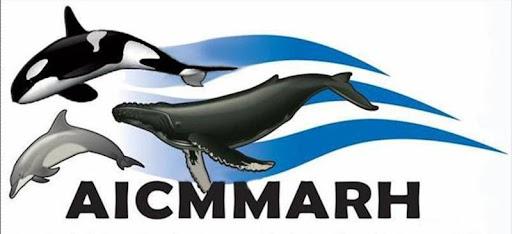 AICMMARH A.C