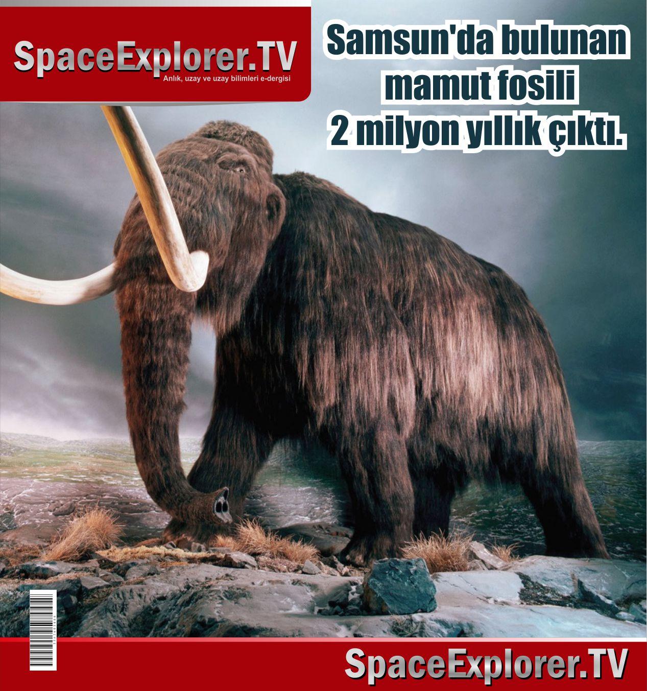 Mamutlar, Nesli tükenen hayvanlar, Arkeoloji, Türkiye, Tabiat Tarihi Müzesi, Fosiller, Evrim aldatmacası,