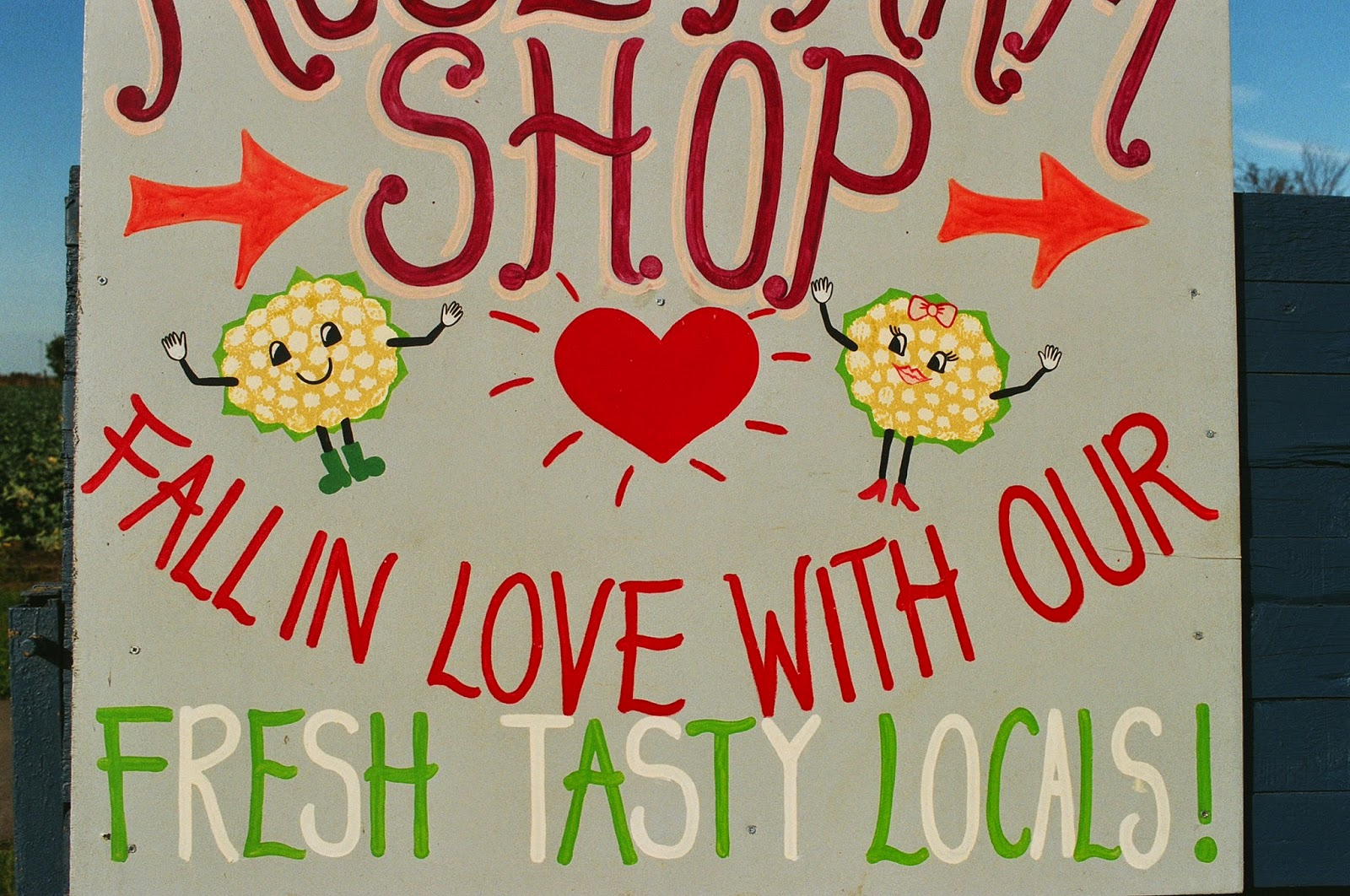 LOCAL PRODUCE, HAND RENDERED SIGNS, FOLK ART, HEALTHY DIETS, SHOP LOCAL, ARTISAN SUPPLIERS, ANTHROPOMORPHISED VEGETABLES,  © VAC 100 DAYS 4 MILLION CONVERSATIONS