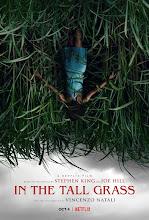 Ultimo film arrivato sull'Isola: