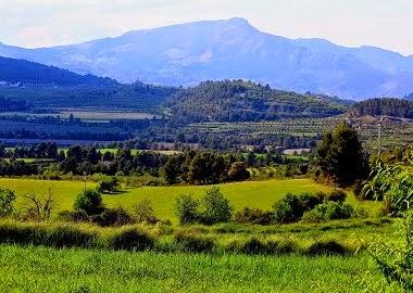 Vall del Comtat, entre Benifallim, Penàguila i Benilloba.