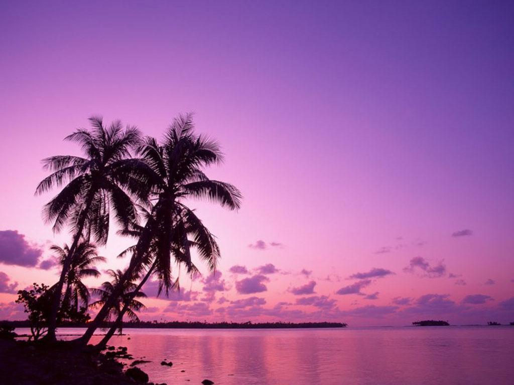 http://2.bp.blogspot.com/-fV19H0TQTC8/Tbkz7mINy0I/AAAAAAAAAGc/LJHWjZo7wRs/s1600/beautiful-beach-nature-scenery.jpg