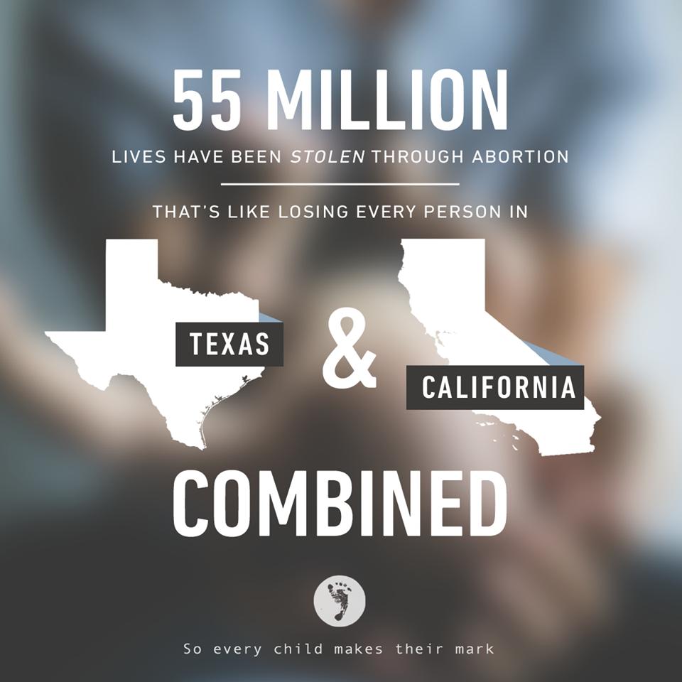 Abortion Statistics