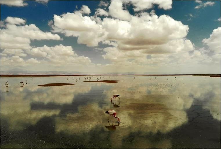 emphoka, photo of the day, Felipe Bustamante, Nikon Coolpix P100