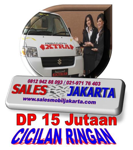 Dp Suzuki Mega Carry Extra