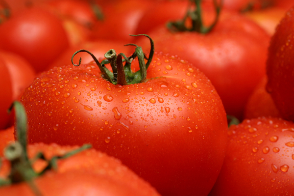 tomato allergy | symptoms and treatment, Skeleton