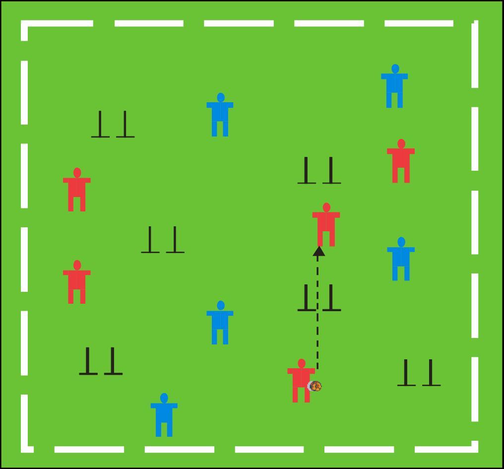 Base de datos de ejercicios de fútbol con más de 300