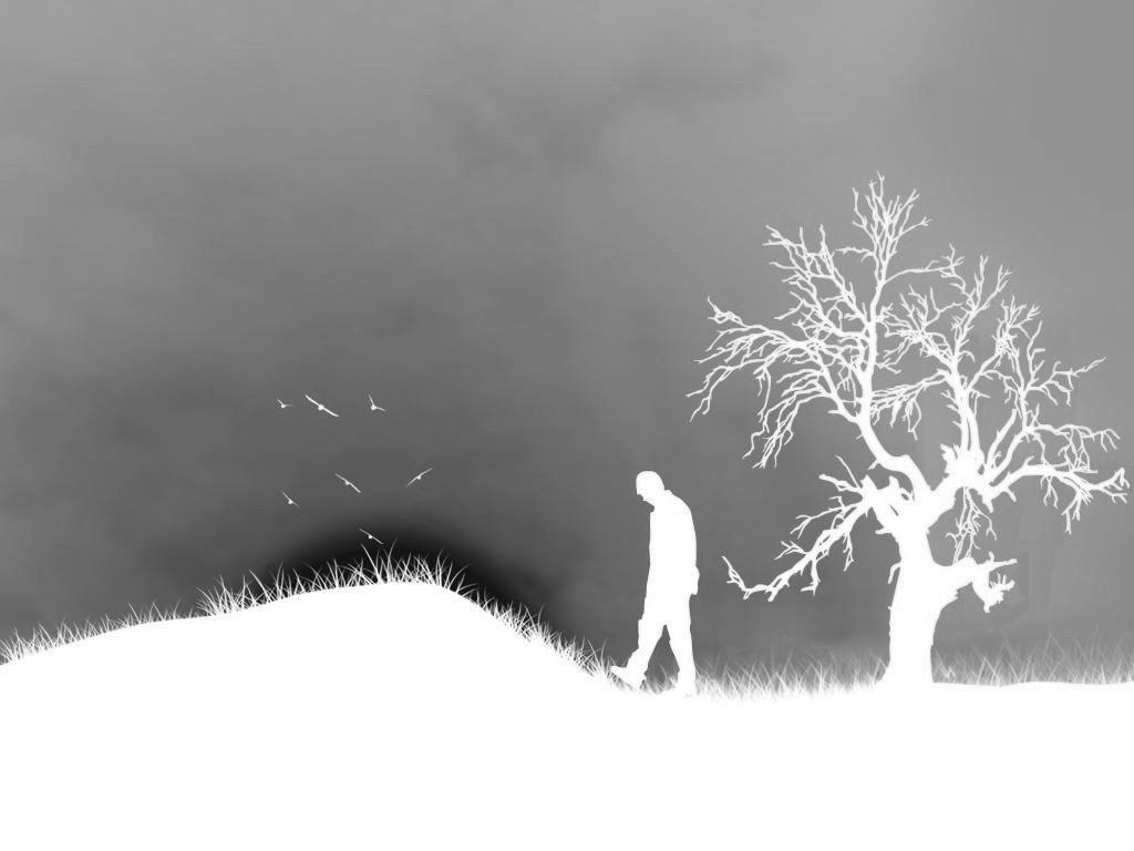 Tâchez d'être heureux Silence-grey-tree-solitude