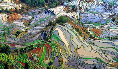 Honghe Hani terraces - China