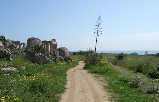 Blick an Resten der Tempel G und E vorbei in Richtung Süden