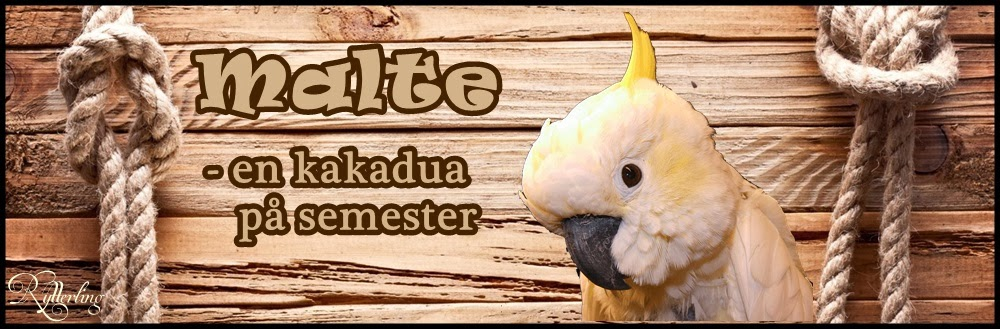 Malte : en kakadua på semester
