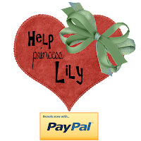 Tax Deductible Donation For Lily's Medical Expenses
