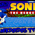 Você Sabia - Curiosidades sobre Sonic - NerdoidosTV