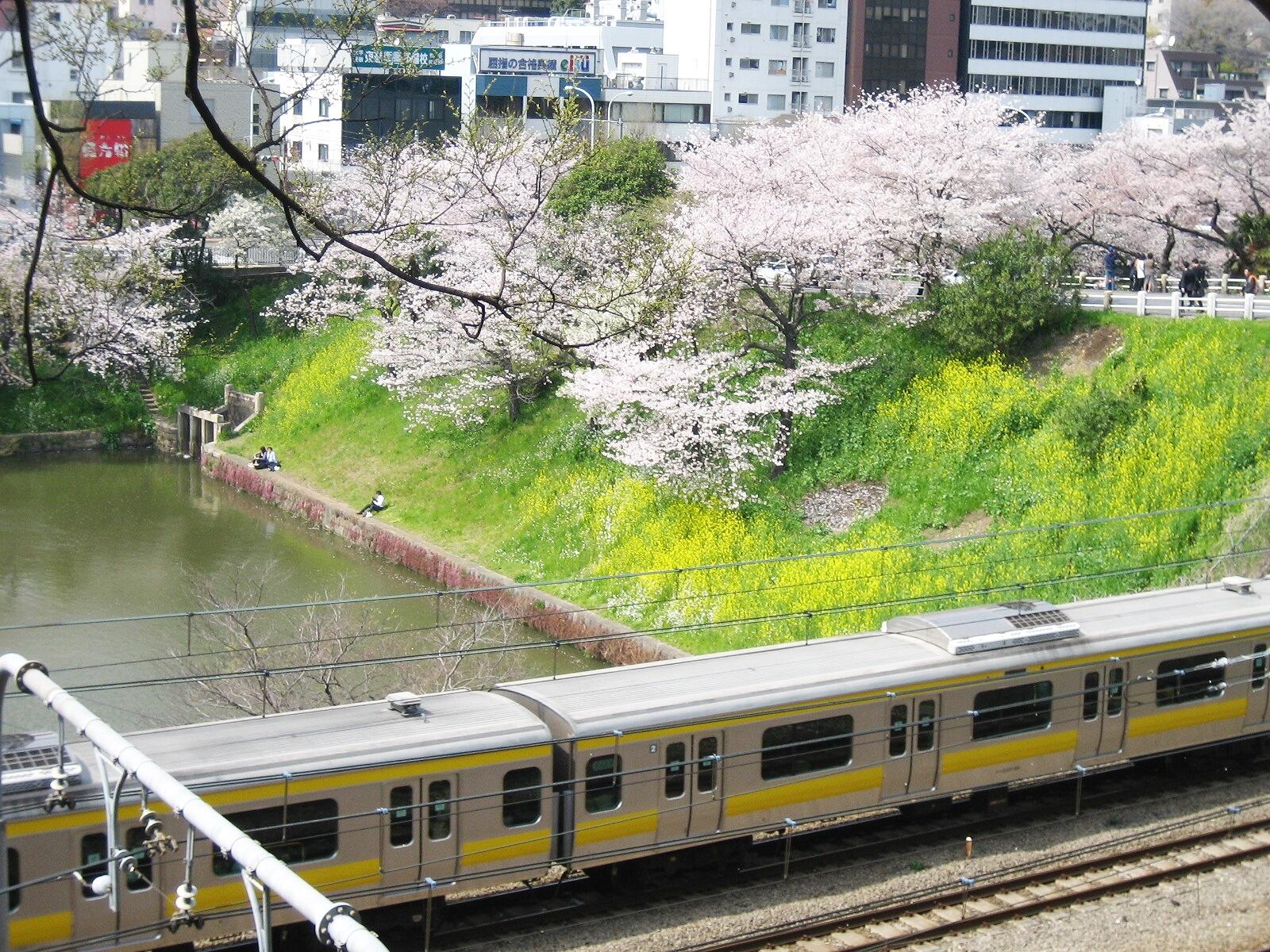 Lieux de rencontre tokyo