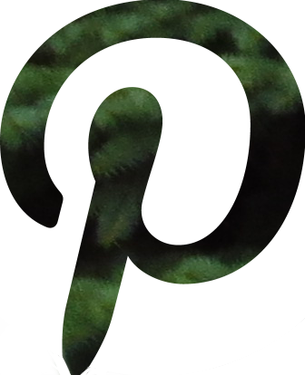 pinterest green social media button