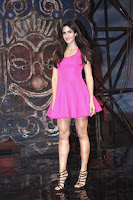Katrina Kaif Dhoom 3 Song Launch (1).jpg