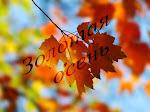 Сезонная галерея. Золотая осень
